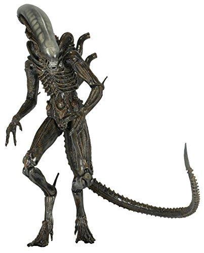 NECA-Aliens-Series-6-Isolation-Xenomorph-Action-Figure-7-Scale-0