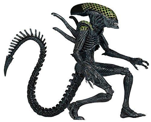NECA-Aliens-Series-7-AvP-Grid-Action-Figure-7-Scale-0