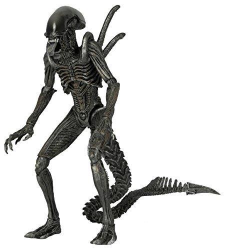 NECA-Aliens-Series-7-AvP-Warrior-Action-Figure-7-Scale-0